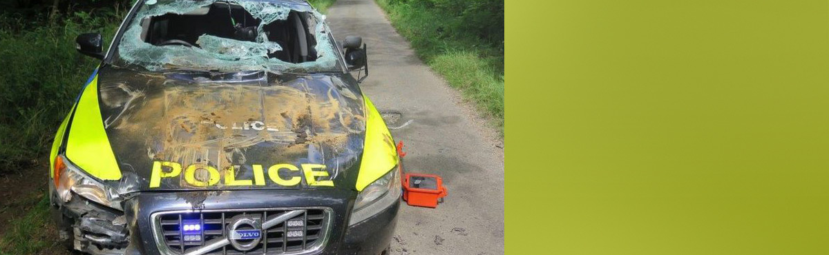 Dumper thief jailed after 37-mile chase